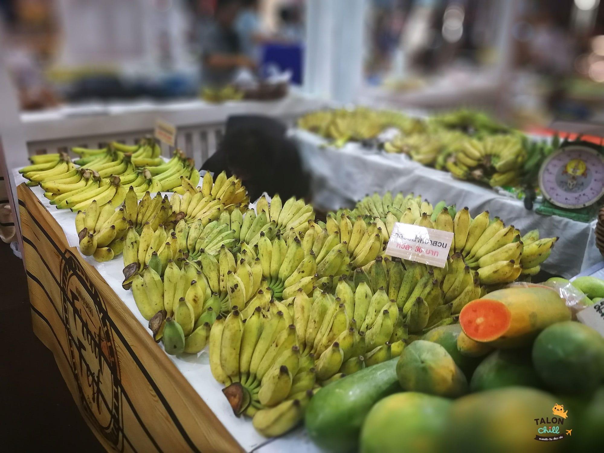 Nonthaburi Fruit Fest 2017 centralplaza rattanathibet 15